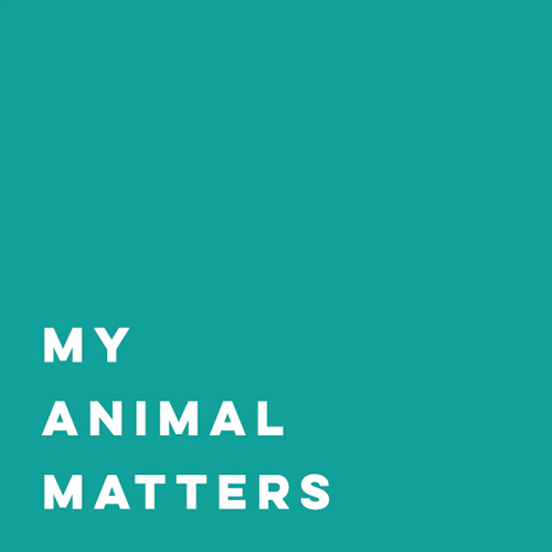 My Animal Matters Ltd logo